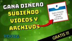 Gana hasta 44 $ por 10 mil reproducciones de Vidoza video